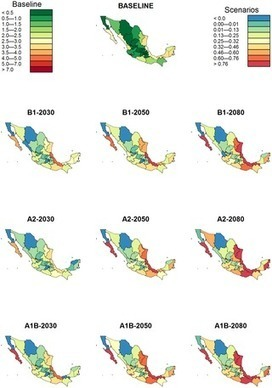 The Effects of Weather and Climate Change on Dengue | Tropical diseases | Scoop.it