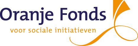 Oranje Fonds - Jaarkalender 2013: overzicht subsidies | Ondernemende bibliotheek | Scoop.it