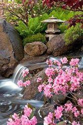 Meghan Kopes-Richards | Facebook | Japanese Gardens | Scoop.it