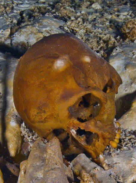 Un squelette vieux de 13 000 ans lève le voile sur l'origine des Amérindiens   Amérique Latine : entre croissance et territoires en marge, une zone au développement inégal.   Scoop.it