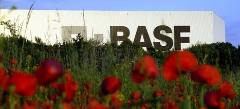 The growth of an enterprise social network at BASF | simply communicate | Unleashing Social Energy | Scoop.it