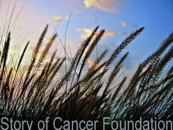 Story of Cancer Foundation Website Launch - How Stories Cure Cancer | Curation Revolution | Scoop.it