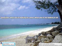 Sometimes what you're looking for comes when you're not looking at all.   Psychic Readings Source   Scoop.it