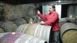 Some France makers of wine go natural, and fight the system | Vitabella Wine Daily Gossip | Scoop.it