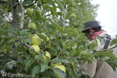 Pesticides : 85 médecins limousins lancent l'alerte   Toxique, soyons vigilant !   Scoop.it
