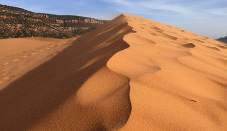 Coral Pink Sand Dunes State Park in Utah | AmeriKat | Scoop.it