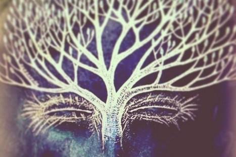 200+ Consciousness Raising Documentaries | Storyteller | Scoop.it