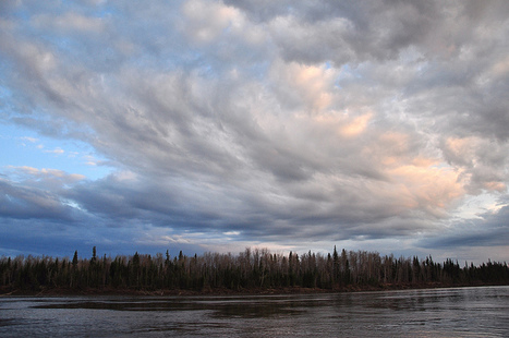 Curdled Clouds | NWT News | Scoop.it