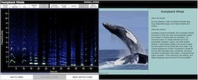 Raven: Interactive Sound Analysis Software | Acoustique | Scoop.it