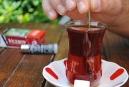 Can A Cure For Type 2 Diabetes Be As Simple As Tea? | Gestational Diabetes Diet Meal Plan | Scoop.it