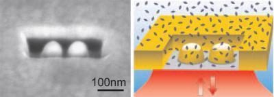 Sensing individual biomolecules with optical sensors inside nanoboxes | IOT | Scoop.it