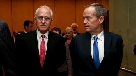 Make no mistake, the Coalition and Labor are playing politics with same-sex marriage | Gay News | Scoop.it