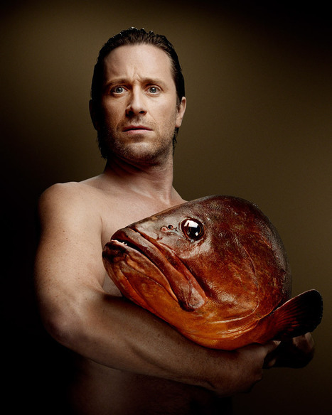 Denis Rouvre for the Association Fishlove | What's new in Visual Communication? | Scoop.it