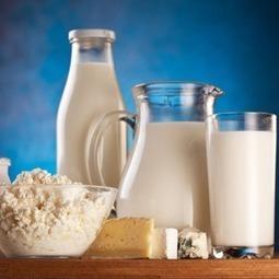 Manger des produits laitiers réduirait le risque de diabète   Maladies et infections   Scoop.it