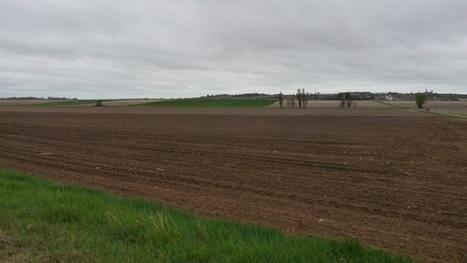 Marché foncier - Le prix des terres en Europe et aux Etats-Unis   Foncier : Aménageons autrement   Scoop.it