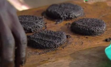 These Burgers Are Made of Flies and They Are Amazingly Nutritious | Strange days indeed... | Scoop.it