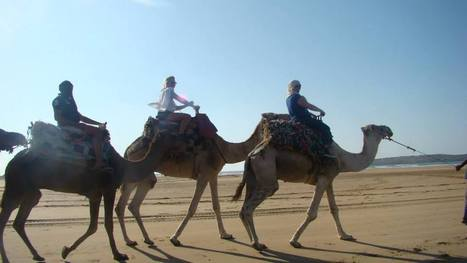 Morocco sightseeing - Tours - Excursions & Day Trips Marrakech Tours Excursions - Private Day Tours Tanger, Casablanca, Meknes, Fes Day Trips & Excursions  Morocco Tours Excursions & Private Day Tours   Morocco Travel with Local   www.glampingmorocco.com   Scoop.it