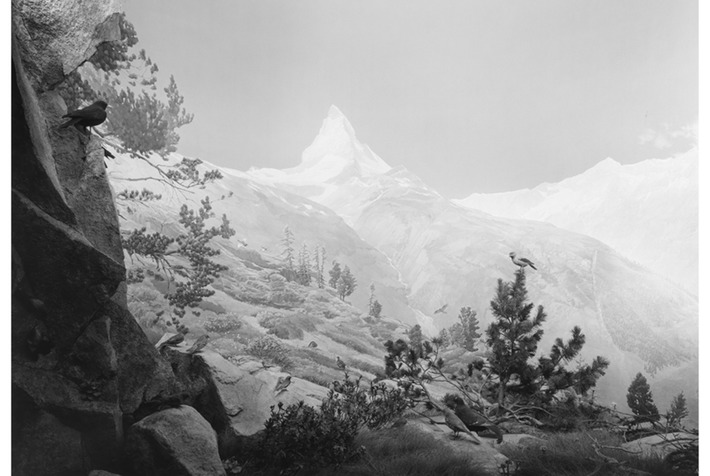 Exhibition of seventeen large-format photographs by Hiroshi Sugimoto opens at Pace London | Art Daily | Asie | Scoop.it