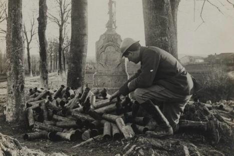 Armistice du 11 novembre : des clichés tenaces sur la Grande Guerre - France 24   Centenaire   Scoop.it