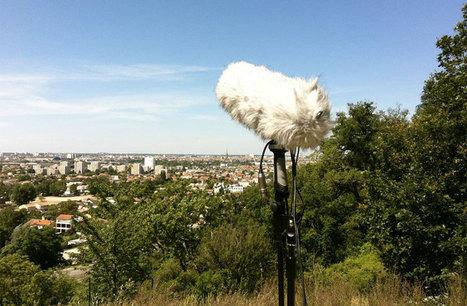 Paysages Sonores   Biennale Panoramas   DESARTSONNANTS - CRÉATION SONORE ET ENVIRONNEMENT - ENVIRONMENTAL SOUND ART - PAYSAGES ET ECOLOGIE SONORE   Scoop.it