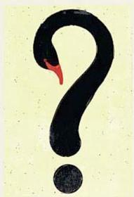 Cuídate de los cisnes negros: la propuesta de Nassim Taleb para la Nueva Era | Facultad de Ciencias Económicas y Empresariales - UM | Scoop.it