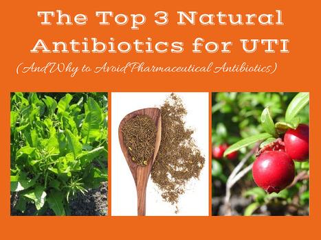 The 3 Most Potent Natural Antibiotics for UTI - Natural Alternative Therapies | Alternative Medicine | Scoop.it