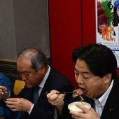 Tokyo veut relancer la chasse commerciale des baleines, bravant l'ONU | Ecology view | Scoop.it