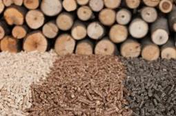Biomass noise causing misery for Markinch residents | Better By Nature | motorsport noise | Scoop.it
