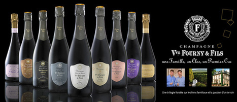 The Oaks Cellars is The Exclusive Distributor of Veuve Fourny | The Oaks Cellars | Scoop.it
