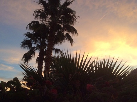 The Desert Retreat House: A Worry-Free Zone | welbeing, happiness, art of living, strenghts | Scoop.it