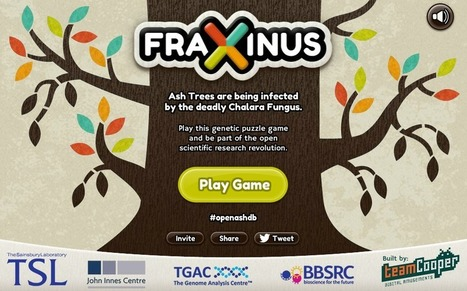 Play Facebook Game to Save the Ash Forests | John Innes Centre on the web | Scoop.it