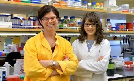 Bacteria use traffic-cop-like mechanism to infect gut - Scienmag | Membrane vesicle trafficking | Scoop.it