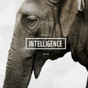 FREE App: A Great App About Endangered Animals | Educational Apps and Beyond | Scoop.it