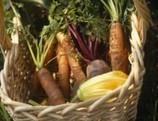 Alimentos ecológicos ¿qué son?   Alimentos Transgenicos y Consumo Responsable   Scoop.it