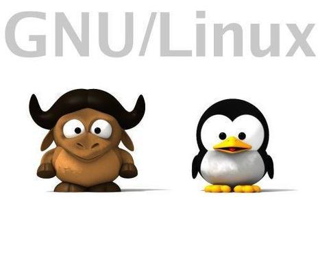 Curiosi di imparare ad usare Linux? La Linux Foundation organizza un corso gratuito | Zingarelli.biz [press review] | Scoop.it