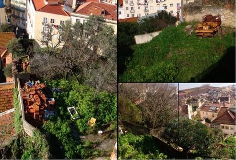 Lutter contre la crise à mains nues : économie informelle et agriculture urbaine à Lisbonne | Confidences Canopéennes | Scoop.it