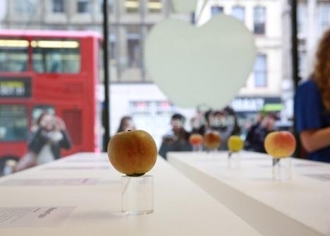 Un Apple Store qui vend des vraies pommes à Londres | Curiosités planétaires | Scoop.it