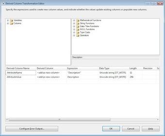 Johan Machielse: Master Data Services: Loading data using SSIS   Microsoft Business Intelligence (MSBI)   Scoop.it