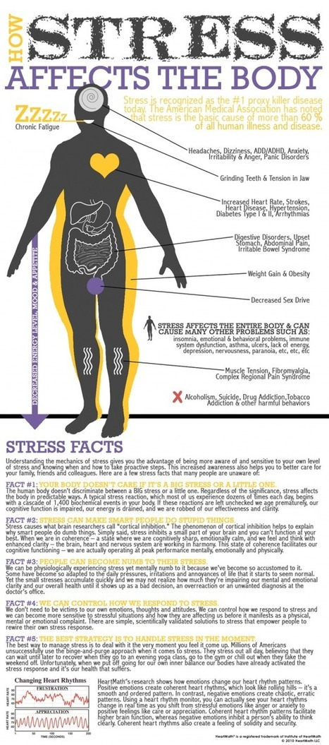 Stress on the Body [infographic] | Daily Infographic | Infographics for English class | Scoop.it