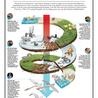 infographicsforschools