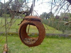 Créer une #mangeoire à #oiseaux avec une noix de coco | #projet  #DIY | Best of coin des bricoleurs | Scoop.it