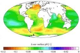 L'acidification des océans pointée du doigt par l'Académie des Sciences américaine | Sciences & Technology | Scoop.it