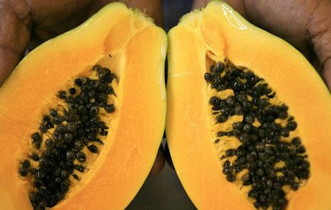 Maui county clerk advances anti-GMO petition - Hawaii News - Honolulu Star-Advertiser | Monsanto Sucks | Scoop.it