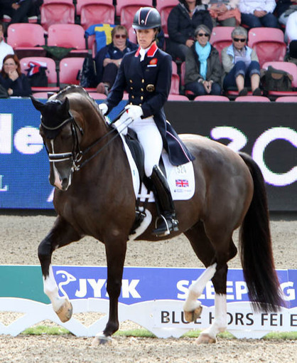 Charlotte Dujardin & Valegro to Compete at Amsterdam Aiming for 1st World Cup Final | Horse shows | Scoop.it