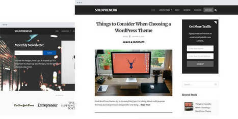 Solopreneur - A Blogging WordPress Theme from FancyThemes | Free & Premium WordPress Themes | Scoop.it