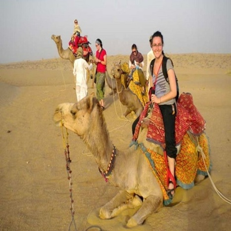 Bikaner-The Country of Camels | Information hub | Scoop.it