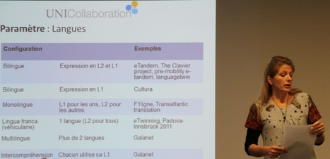 Grenoble workshop on telecollaboration and uni-collaboration.eu | Telecollaboration in University Education | Scoop.it