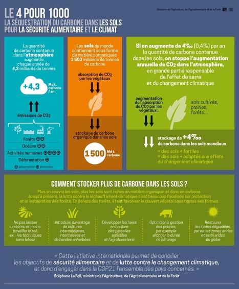 Comprendre | Ecologie, Agro-écologie, Enseignement agricole | Scoop.it
