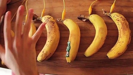 Jay Silver: How to control a computer with a banana | iDevice Tools for Creativity | Scoop.it
