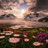 The Surreal Landscape Of Marc Adamus | Fstoppers | creative photography | Scoop.it